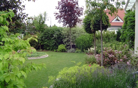 bepflanzung garten