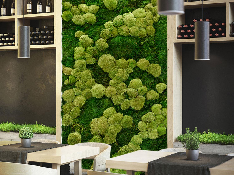 Grüne Wand von MGG